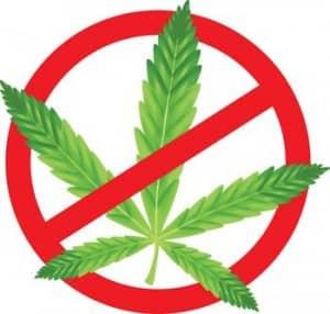 marihuánáról