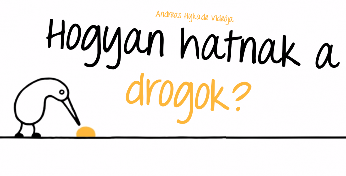 drogok video madar